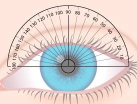 Возрастные изменения зрения после 50 лет как применять плюсовые очки